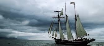 Una nave di artisti e ricercatori per sentirsi un po' Darwin