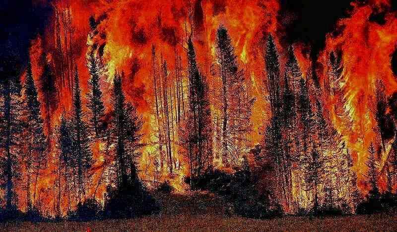 Chi se ne frega degli incendi dall'altra parte del mondo?