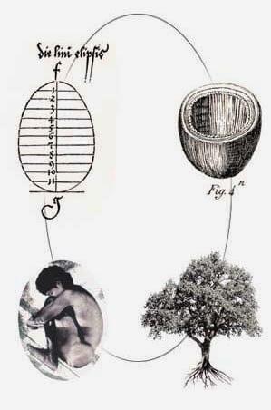 E se domani diventassi un bosco, Gibran che direbbe?