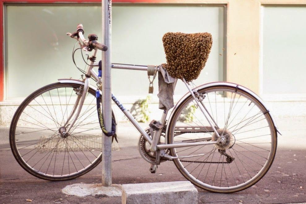La bici alveare