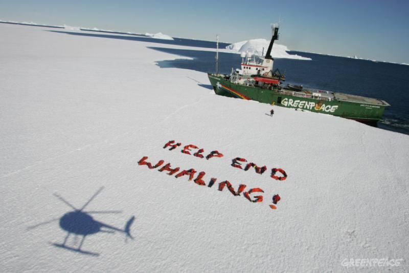 11 good news per l' ambiente 2015