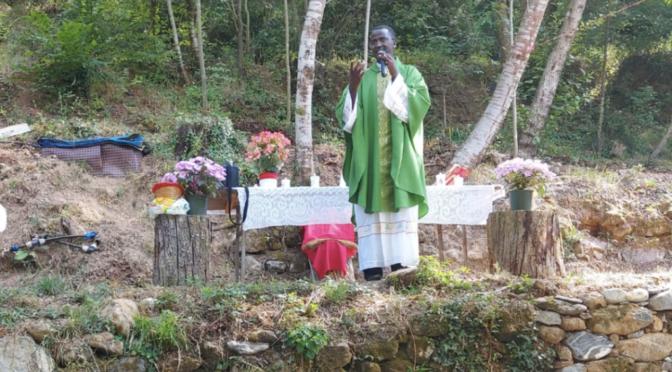 preti che predicano il verde
